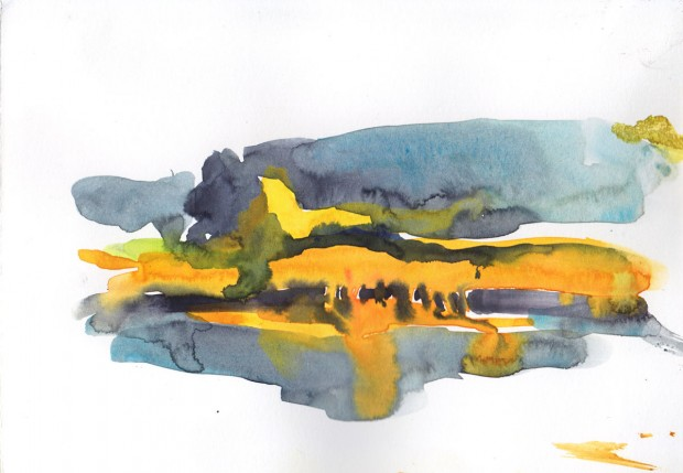 Morning at a pond 1